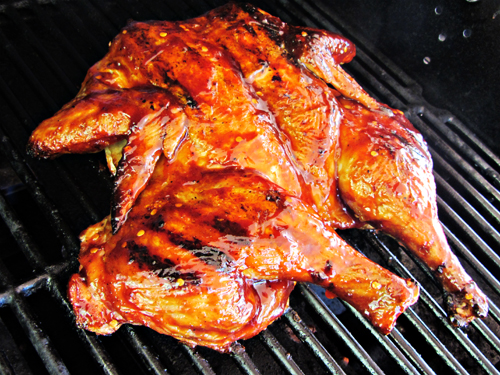 Grilled Butterflied Whole Chicken With Barbecue Sauce -7420