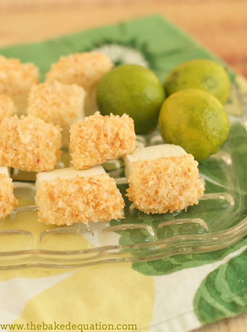 Toasted Coconut and Key Lime Marshmallows by Around My Family Table