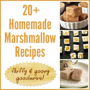 20+ Homemade Marshmallow Recipes – fluffy and gooey goodness!