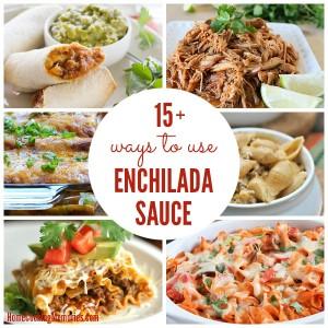 Ways To Use Enchilada Sauce 2