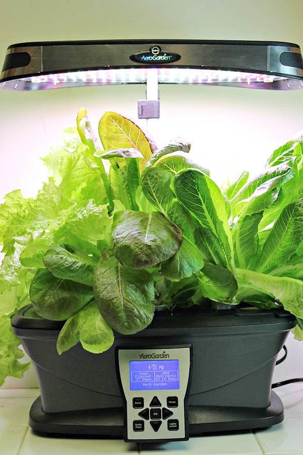 AeroGarden LED Ultra - Growing Heirloom Lettuces