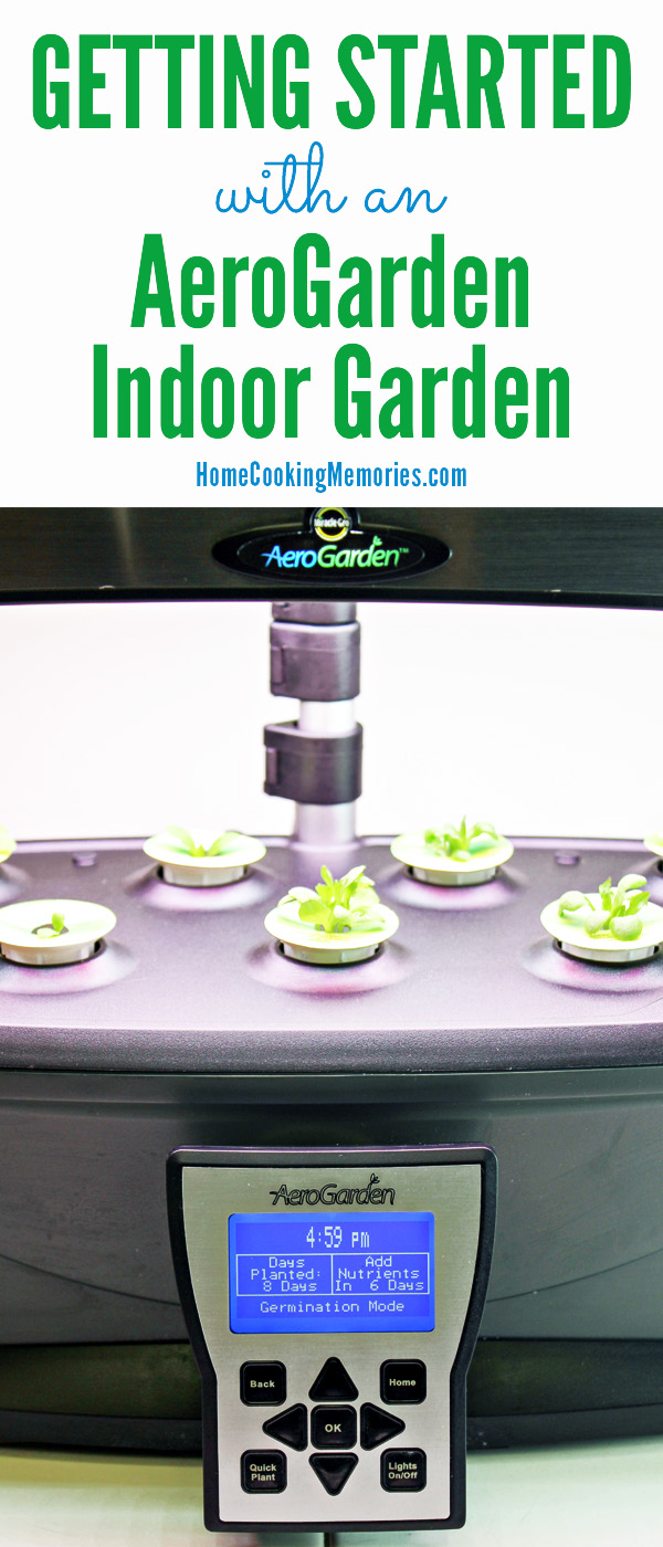 Getting Started with an AeroGarden Indoor Garden