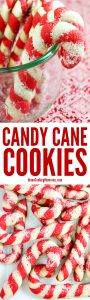 Christmas Candy Cane Cookie Recipe