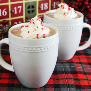 Peppermint and Whipped Vodka Hot Chocolate Recipe