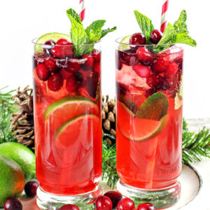 Cranberry Mojito Cocktail Recipe